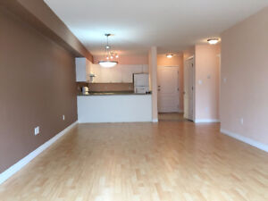 Spacious One Bedroom Condo Alberta Side - Available Immediately!