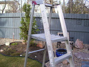 4 foot Platform Ladder