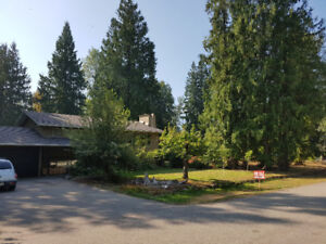 Renovated House Close to RMR - Beautiful 1/2 Acre Lot