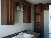 Customized Kitchen/Bathroom/Bedroom Cabinets
