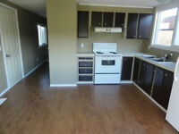 Fully Renovated 2 and 3 BR Mobile Homes, PRICE-REDUCED