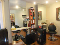 Appealing Home with in Home Hair Salon for sale