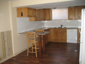 Newly Renovated Basement Suite in Airdrie