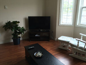 Room for rent (short-term or long-term)