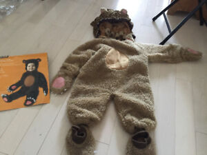 Bear / Ewok costume