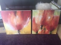 Reduced 2 flower box canvas pictures