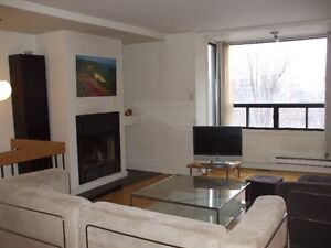 Downtown 2 bedroom 2 floors Townhouse furnished WiFi