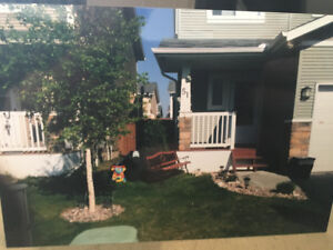 Duplex for rent in clareview