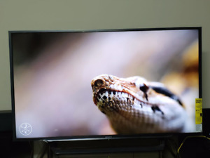 Sony / FULL HD / 48inches / Brand New Smart TV / Moving sale