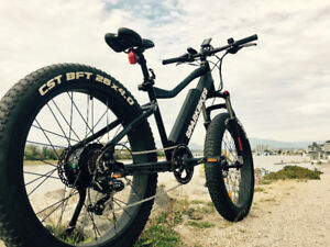 Spark X (Fat Tire) - Electric Bike - eBike - 500W - LG 48V 13Ah