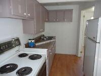 very modern and clean mid-size 1 bdrm available Sept 1st