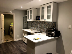 Large Basement Bachelor in Pickering