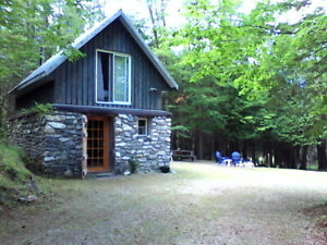 CABIN THE WOODS FOR RENT