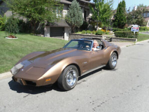1975 Chevrolet Corvette Stingray Coupé (2 portes)