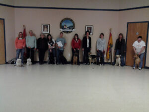 Spring Dog Training Classes!!