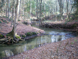 Picturesque, Productive, LAKEVIEWS, Forest, Creek, Trails