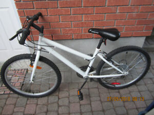 Girls Mountain Bike - Great Working & Looking Condition - $80.00