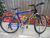 75% off  Very good Mountain bike for sale