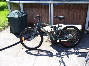 ccm ecco mountain bike