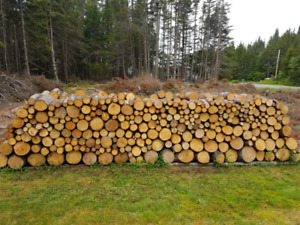 Campfire/firewood for sale.
