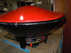 Electric Wok cooker