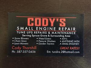 Need Small Engine Repairs? Edmonton Edmonton Area image 1