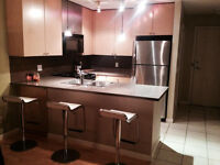 Fully Furnished 1 Bedroom Condo Available December 15