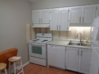 3+1 Bdrm Townhouse with Parking - Heron & Walkley Rd