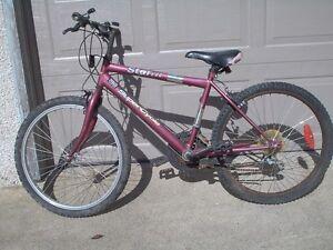 Teen or Adult Mountain Bikes