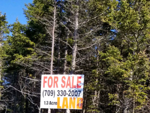 Frontal land for sale in St. John's! 1.3 acres. Thorburn road