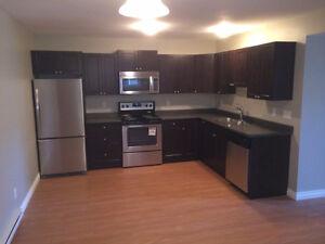 Hillview Duplex Lower Suite