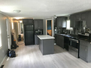 3 bedroom mobile, fully renovated, for rent in westview