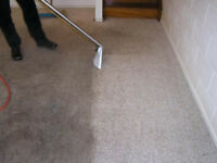 PROFESSIONAL CARPET AND STEAM CLEANERS **MISSISSAUGA