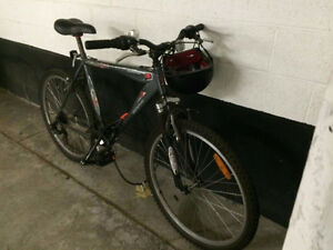 Raleigh commuter bike ($300)