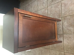 Cabinet I use as a shoe cabinet: $20.00