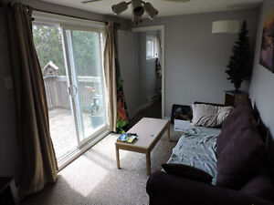 Available Now !! One Bedroom House with deck Cambridge Kitchener Area image 2