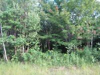 PRICE REDUCED..great 100 plus acres for hunting camp or cottage