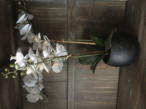 Feel real artificial orchid