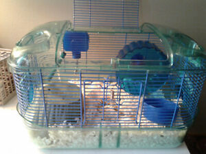 Mouse,hamster and gerbil habitat with accessories