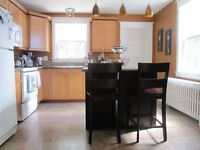 3 Bedroom House near Downtown avail. nightly August 4-9