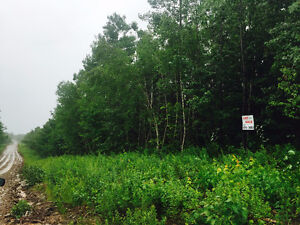 92 ACRES IN LINCOLN / RUSAGONIS