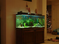 WANTED: 55 gallon to 90 gallon aquarium