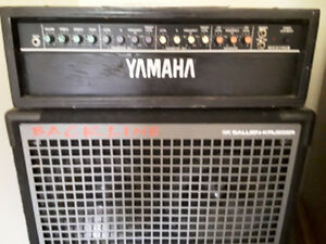 Bass amp,  guitar, 2-10 &15 cabs!