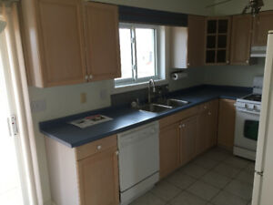 Nice Kitchen Cabinets FOR SALE