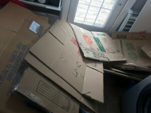Approx 20+ Used Moving boxes