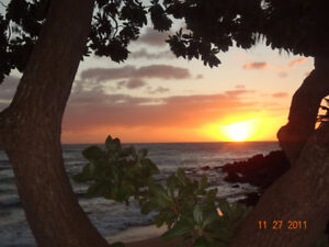 Lawai Beach Resort, Kauai - Oceanfront Condo Nov 11-18 2017