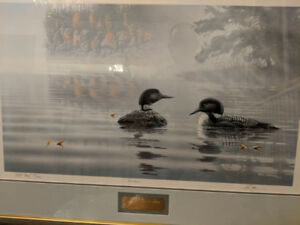 "Marc Barrie ""Reunion"" - Loon Artwork"