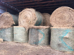 Hay for SALE by Cold Lake