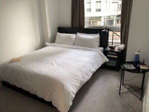 Master bedroom with ensuite washroom downtown