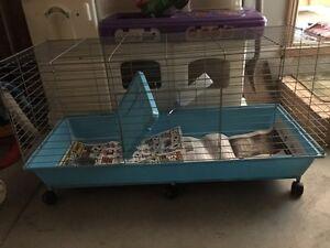 guinnea pig /rabbit or small animal cage Windsor Region Ontario image 2